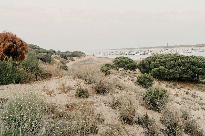 Sergio Cantos Fotógrafo 048 Boda en la Playa